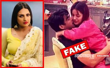 Bigg Boss 13 BUBBLE BURSTS: Sidharth Shukla And Shehnaaz Gill Are NOT In Love', Declares Himanshi Khurana- EXCLUSIVE