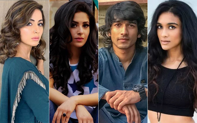 Hina Khan-Shubhaavi Choksey 2.0: Now, Shantanu Maheswari Gets Slapped By Nityaami Shirke!
