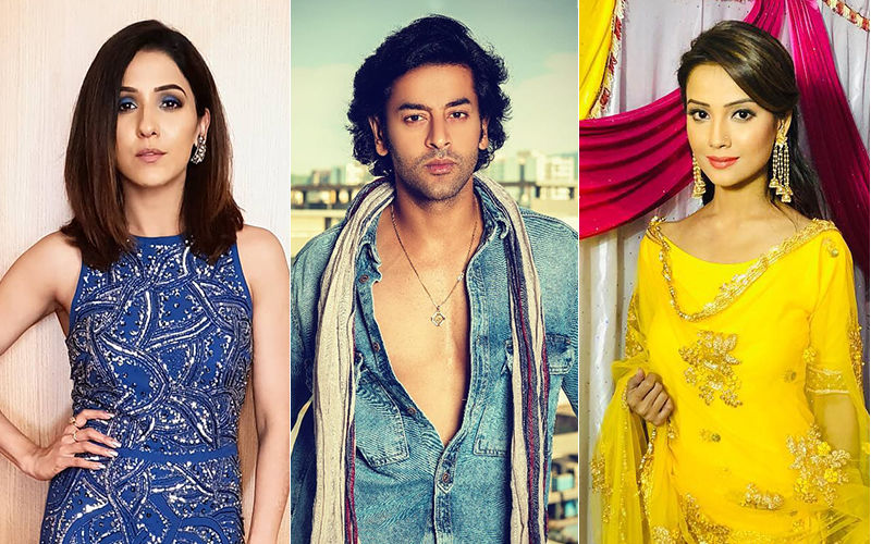 Holi 2019: Here's How Shashank Vyas, Neeti Mohan, Adaa Khan Plan To Celebrate The Festival