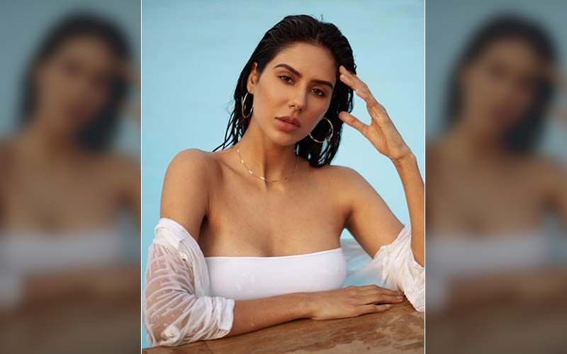 HOTNESS OVERLOAD! Sonam Bajwa Sizzles In A White Dress In A Swimming Pool