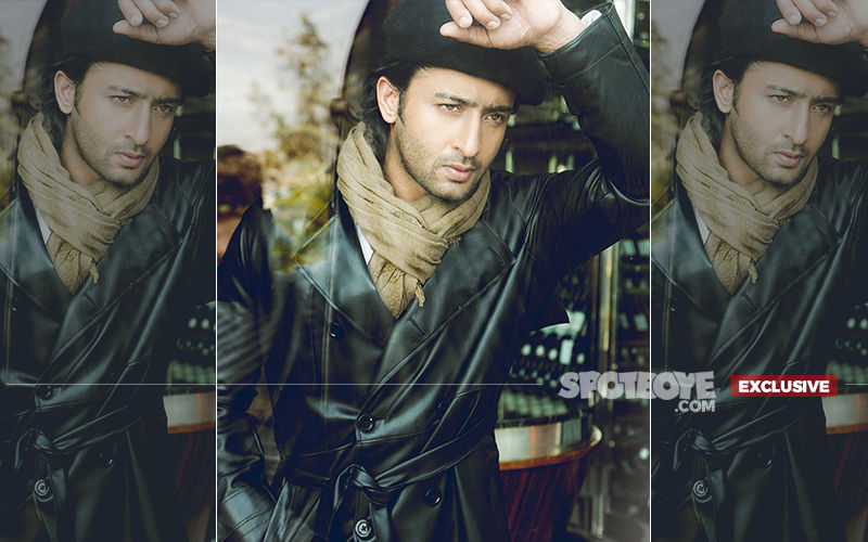 Is Shaheer Sheikh Entering Bollywood With A Yash Raj Film? Actor Reacts