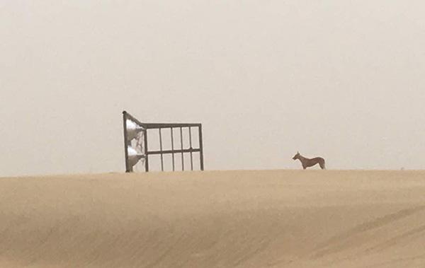 jaisalmer sets of parmanu hit by a sandstorm