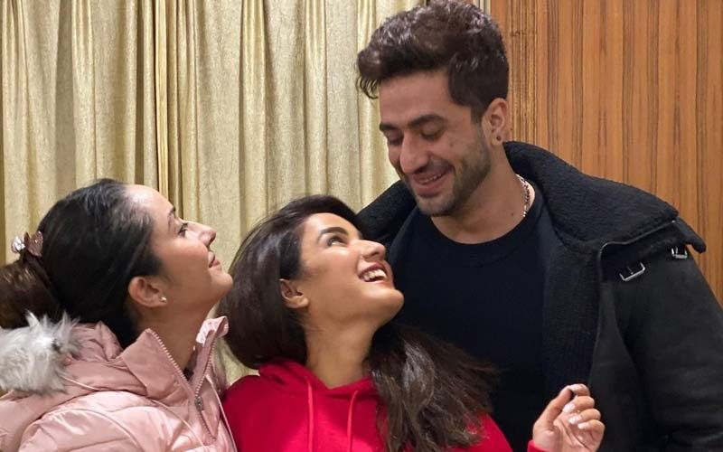 Bigg Boss 14: Aly Goni's Sister Ilham On His Bond With Jasmin Bhasin: 'I'm Happy That They Are Taking Their Relationship Seriously'