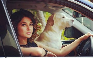 Beyhadh 2: Jennifer Winget Thanks Everyone For Applauding New Promo, Says, 'Picture Toh Abhi Baaki Hai'