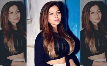 Kanika Kapoor Coronavirus Controversy: Doctor RUBBISHES Her Claims: 'Her Room Is Cleaned Every 4 Hours'