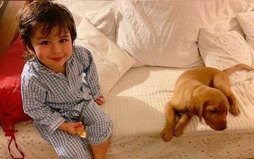 Taimur Ali Khan's Happiness Knows No Bounds As He Sheepishly Poses For a Picture With A Cute Pup