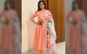 Mother To Be Koel Mallick Looks Radiant In This Hand Painted Dress, Shares Pic On Instagram