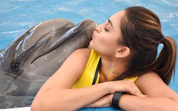 Turkey Diaries: Krystle D'Souza Swims With Dolphins And The Pictures Are A Sight Of Pure Envy