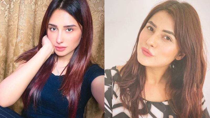 Bigg Boss 13's Mahira Sharma Accused Of Buying Shehnaaz Gill's Fan Pages On Twitter; Khabri's Scathing Tweet INSIDE