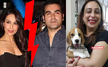 Malaika Arora's Divorce Lawyer's Dog Kidnapped: Recounts The Horror, 'I Want Zomato To Own Up It Was Their Delivery Boy'