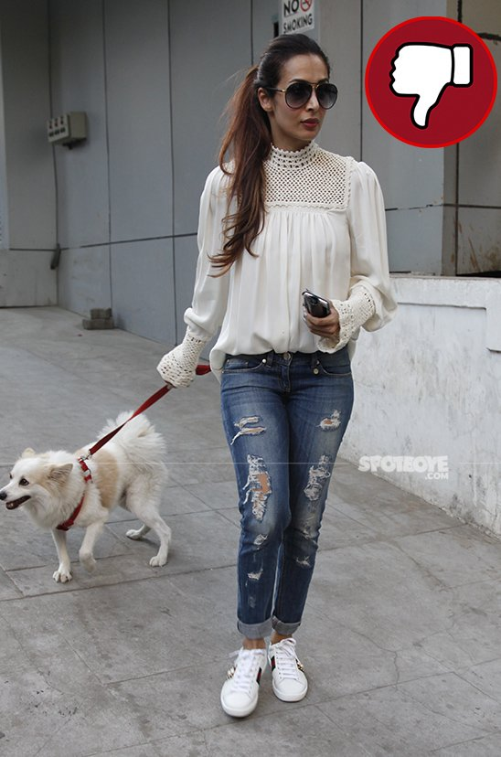 malaika took pooch for a walk