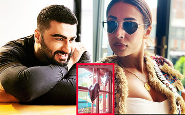 Arjun Kapoor Takes A Cue From Shah Rukh Khan, Woos Malaika Arora With The Song Do Dil Mil Rahe Hain