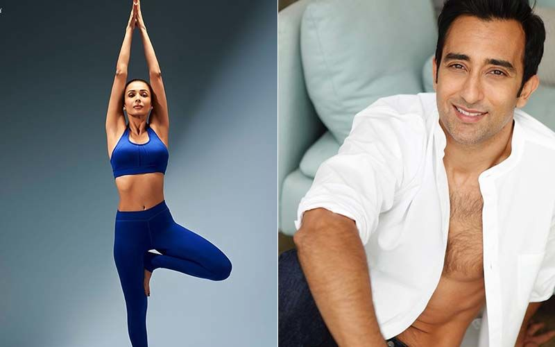 Malaika Arora Strikes The Perfect Yoga Asana Tree Pose; Rahul Khanna Has The Funniest Reply Ever