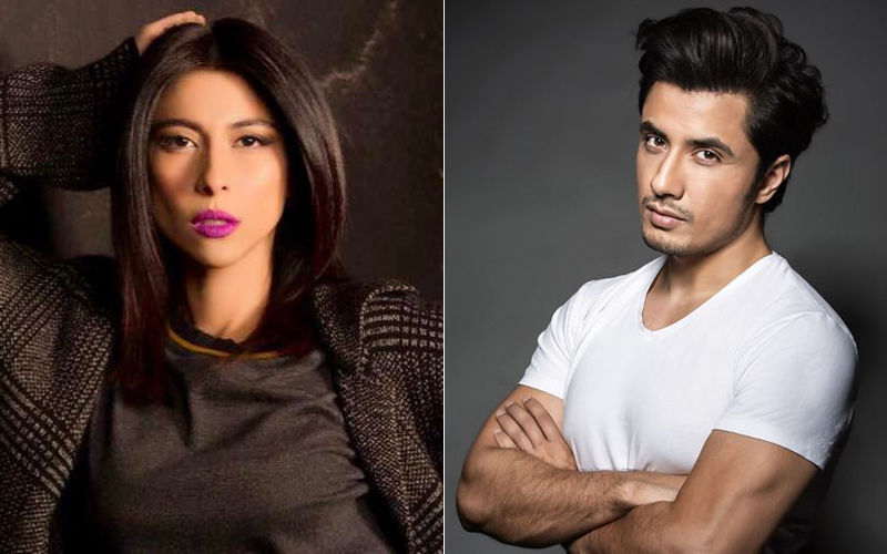 Meesha Shafi Is Not Giving Up, Will Continue To Fight Against Ali Zafar 'For Sexually Harassing Her'