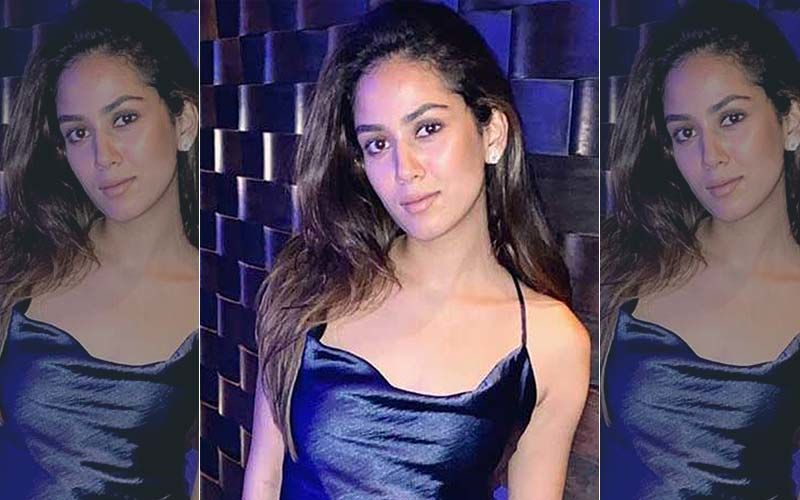 Coronavirus Lockdown: Shahid Kapoor's Wife Mira Rajput Gorges On Chocolate Zucchini Cake, We Are Drooling Just Looking At It