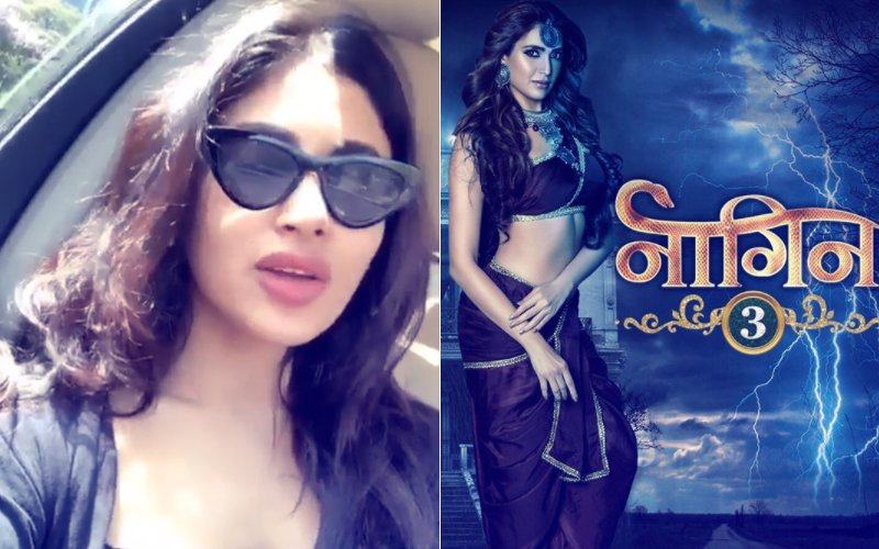 Video: Mouni Roy Has A Special Message For Season 3's 'First Naagin' Karishma Tanna
