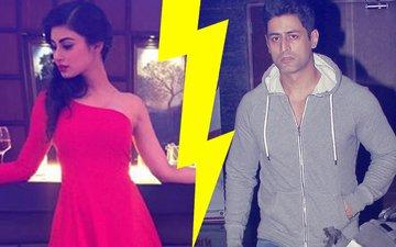 Have Mouni Roy & Mohit Raina Split? Social Media Status Points To Trouble In Paradise