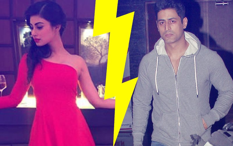 Have Mouni Roy & Mohit Raina Split? Social Media Status Points To Trouble In Paradise