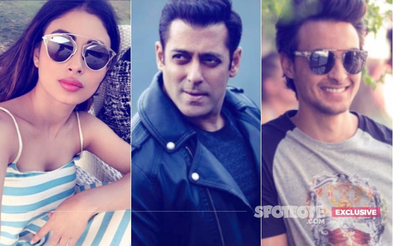 Naagin Star Mouni Roy In Salman Khan's Brother-In-Law Aayush Sharma's Debut Film?