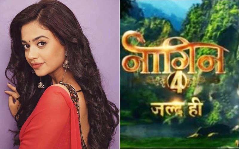 Naagin 4:  Gathbandhan Actress Shruti Sharma REJECTS An Anti-Heroine Role In Ekta Kapoor's Drama