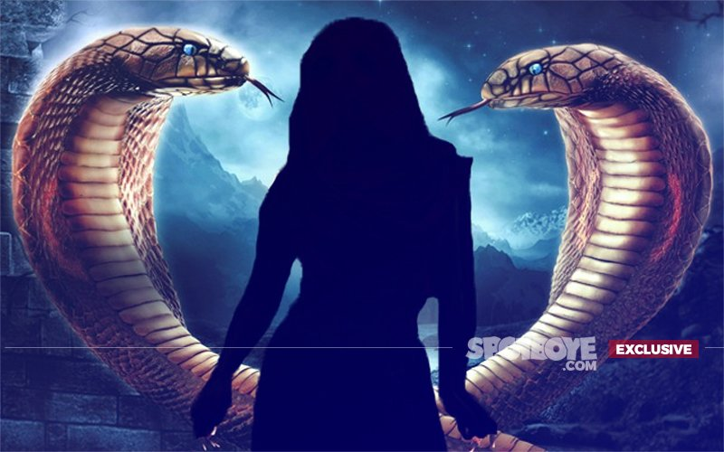 Twist In The Tale: This Naagin Will Die On The Show Soon After Its Launch