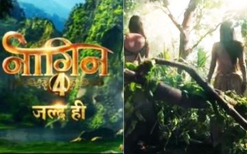 Naagin 4 Teaser: Ekta Kapoor Gives A Glimpse Of Two Naagins And Leaves Fans Guessing About The New Mystery Ladies