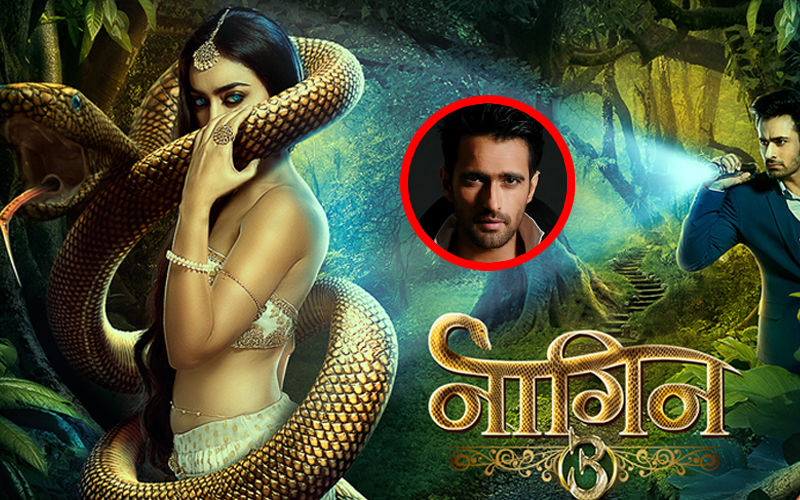Naagin 3 To Witness A 20-Year Leap; Deepak Wadhwa Roped In To Play Parallel Lead