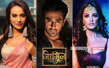 Bid Goodbye To Naagin 3! Surbhi Jyoti-Pearl V Puri's Fantasy Drama Will Go Off-Air On May 26