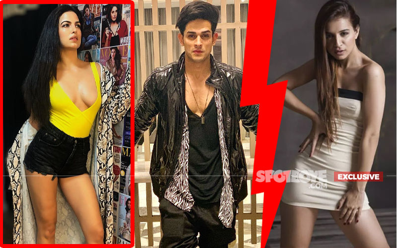 Natasa Stankovic Reacts On Priyank Sharma-Benafsha Soonawalla's Big Fight
