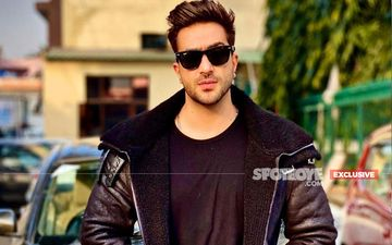 Bigg Boss 14: Here Is Why Aly Goni Opted Out Of The Show?- EXCLUSIVE