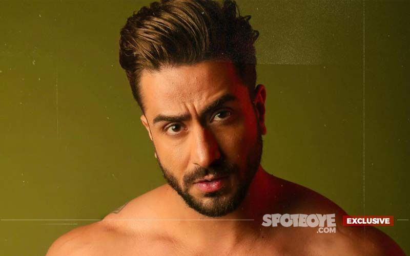 Bigg Boss 14: Aly Goni Ditches The Controversial Reality Show For Boney Kapoor's Zidd- EXCLUSIVE