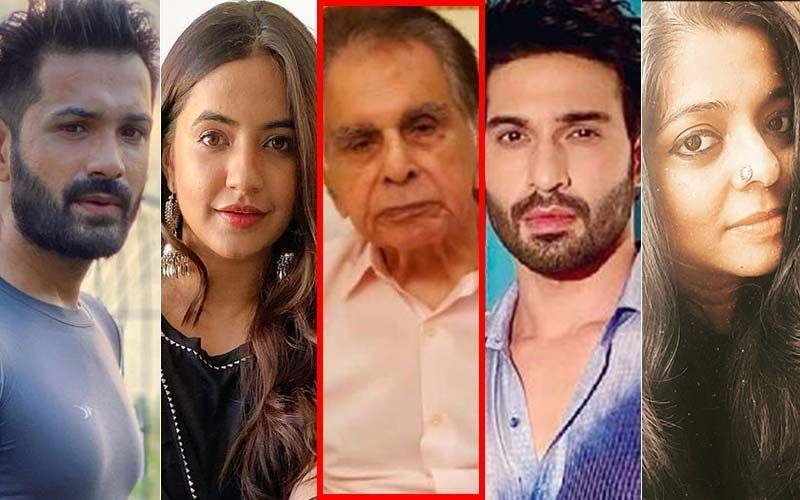 Dilip Kumar Passes Away: Mrunal Jain, Meera Deosthale, Vijayendra Kumeria, Nivedita Basu, Hasan Zaidi Remember Thespian's Power-Packed Films