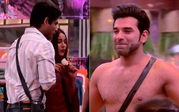 Bigg Boss 13: Paras Chhabra Takes Off His Shirt To Impress Gill; Shefali Approves Of Sidharth-Shehnaaz's Jodi