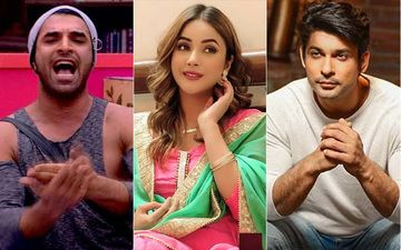 Bigg Boss 13: Paras Chhabra To Shehnaaz Gill, 'I Love You, When You're With Sidharth Shukla, I Get Fire In My Body'