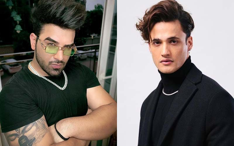 WHAT! Foes Turned Friends, Bigg Boss 13's Paras Chhabra And Asim Riaz Bury The Hatchet And Become Friends!