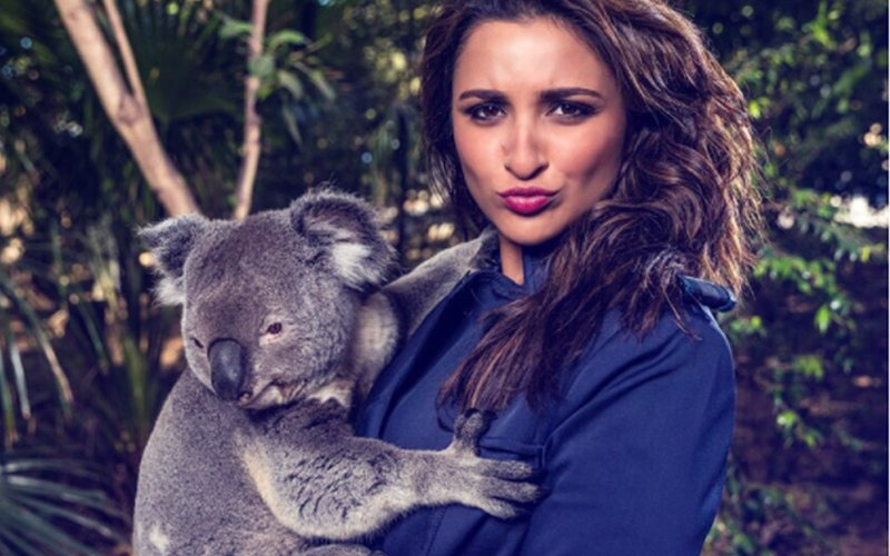 DIRTY MINDS AT WORK: Parineeti Chopra Trolled With Sexual & Nasty Comments