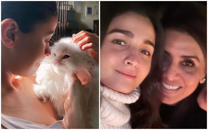 Neetu Kapoor Bonds With Alia Bhatt's Cat Edward While The Actress Is Away In Maldives With Ranbir Kapoor; Shares A Pic With Her 'New Friend'