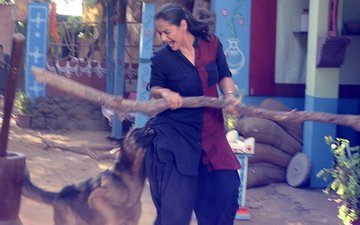 शूट के दौरान टीवी एक्ट्रेस प्राची तेहलान पड़ी मुश्किल में, कुत्ते ने काटा