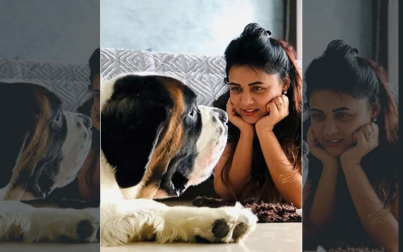 Prarthana Behere's Cute Post With Gabbar Is Trending On Instagram