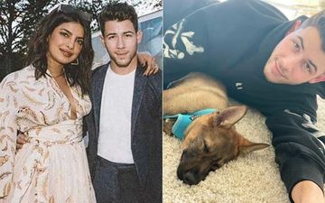 Priyanka Chopra Surprises Husband Nick Jonas With A New Addition To The Fam On Their 1st Anniversary - VIDEO