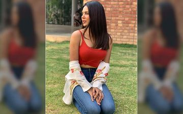 Sonam Bajwa Does Work Out At Home During Quarantine, Shares Insta Videos