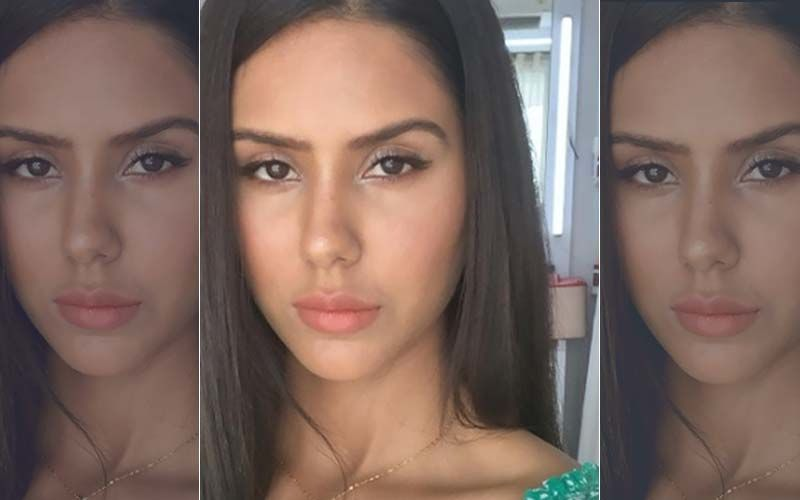 Sonam Bajwa Shares a Super-Glowy Selfie with No-Makeup Look, Proves She is Inherently HOT