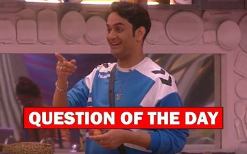 Bigg Boss 13: How Much Are You Going To Miss Vikas Gupta?