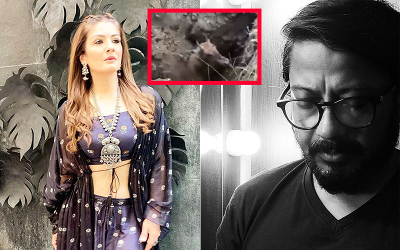 Nilgai Buried Alive: Raveena Tandon, Onir Appalled And Horrified By The Video; Express Their Outrage Over Animal Cruelty