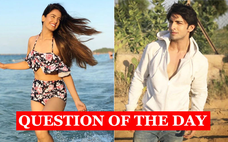 Are Srishty Rode And Rohit Suchanti In Love?