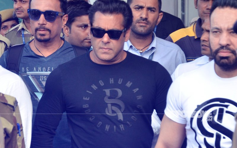 Blackbuck Case: Salman Convicted; Saif, Sonali, Tabu, Neelam Acquitted