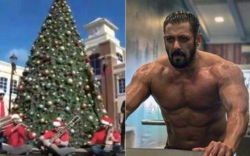 Christmas 2020: Salman Khan Sends Xmas Wish To Hindu, Muslim, Sikh, Isai; Actor Roots For Communal Harmony Via Interesting Video – Watch