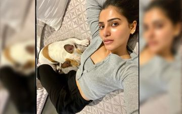 Naga Chaitanya Turns Photographer For Samantha Akkineni; Clicks Wifey's PAWWdorable Photo With Their Pet – PIC Inside