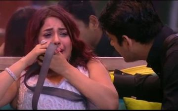 Bigg Boss 13: Shehnaaz Gill In Tears As She Gets Bashed By Salman Khan; #FightBackSana Rules Internet