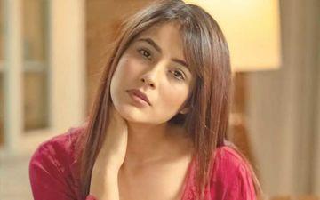 Sidharth Shukla Blushes On Being Called Jijaji; Shehnaaz Gill Wears A Blush Coloured Top Making SidNaaz Fans Go Breathless